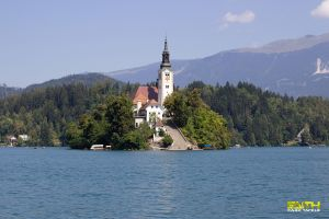Blog: Bled part.1